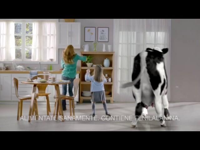 Vaca baila